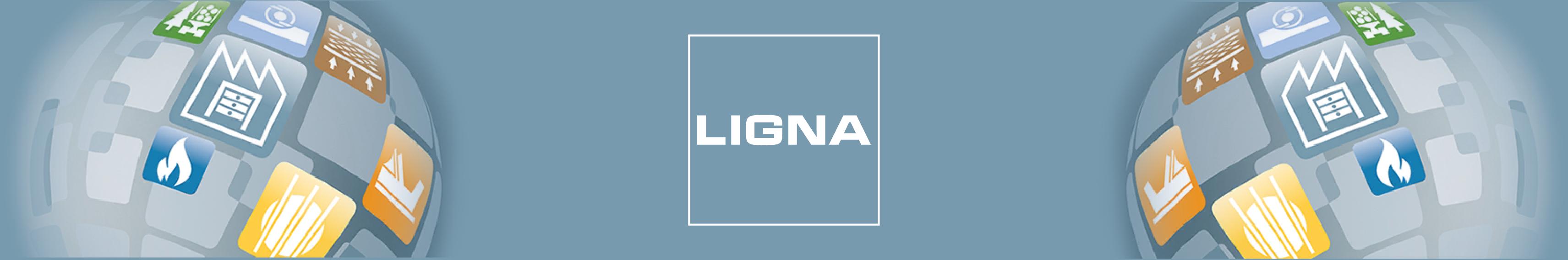 ligna_2015.png